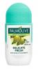 Palmolive Delicate Fresh Антиперспирант шариковый, 50 мл - Антиперспирант шариковый Palmolive Naturals Delicate Fresh Чувствительная Свежесть, 50 мл